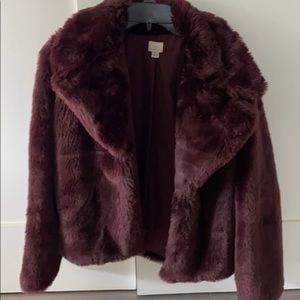Faux fur (teddy bear) coat NWOT
